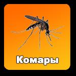 komary-knopka